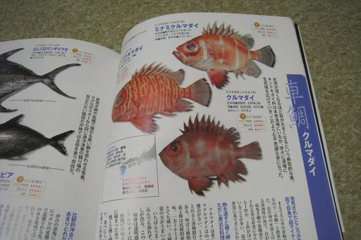 魚図鑑10.JPG